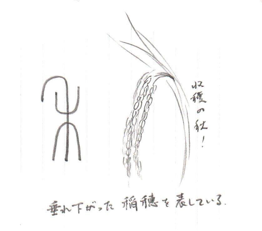 禾は垂れ下がった稲穂